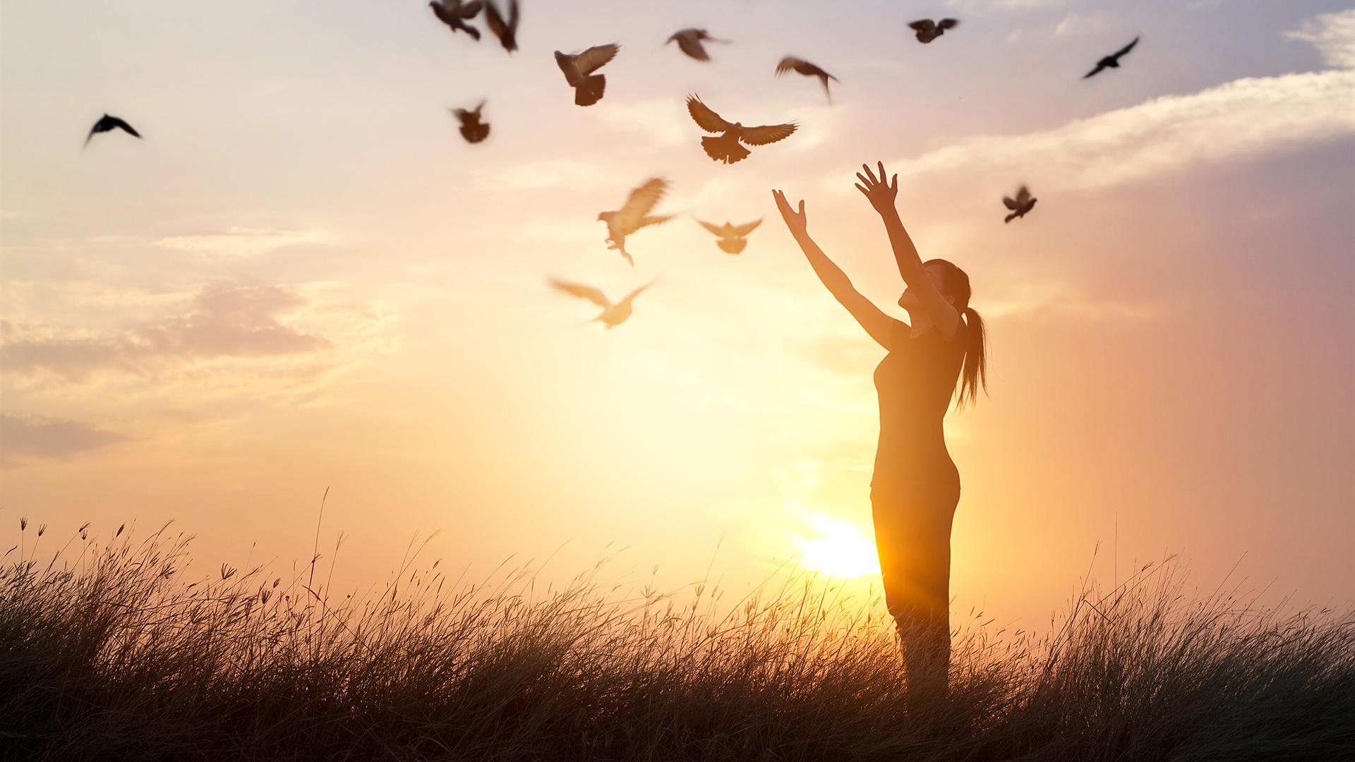 一度きりの人生だから、自分の手でほんとうの自由と幸せを手に入れよう